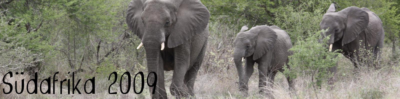 Südafrika 2009
